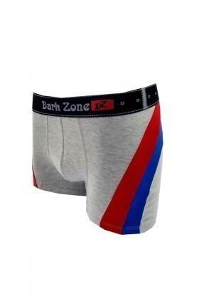 Dark Zone Gri DZ-DZN-4003 Erkek Boxer