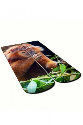 Baskido Karışık Renkli BSD-SO0103 Capuchine Soket Çorap