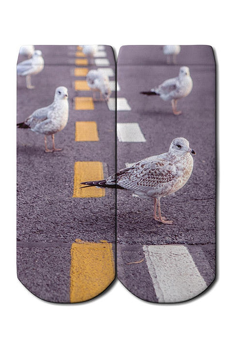 Baskido Karışık Renkli BSD-PT0136 On The Road Patik Çorap