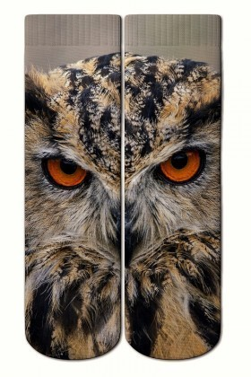 Baskido Karışık Renkli BSD-SO0109 Hoot Soket Çorap