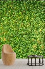 Yaprak Desenli Duvar Kağıdı